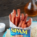 spamrodent