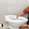 toilettheft